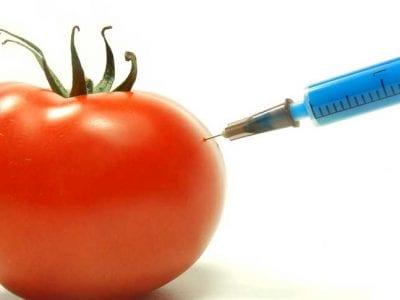 Food Terrorism!